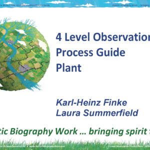 4-Level Observation Process Plant